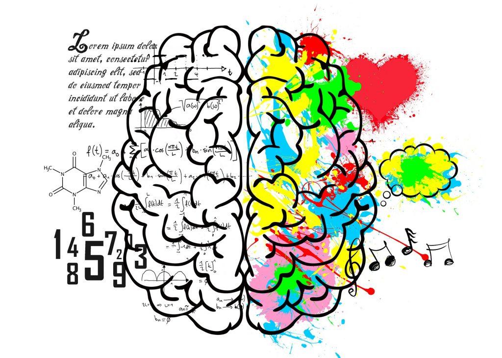 brain-5662029_1920
